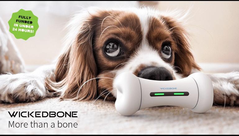 犬のおもちゃもスマートデバイスに。「WICKEDBONE」
