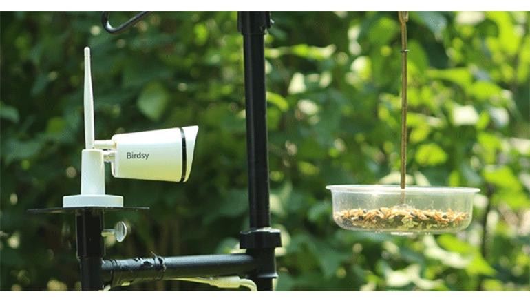 野鳥の観察を手軽に、正確に。「Birdsy」
