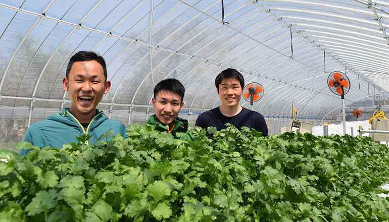 「農業x IoT」東京から一番遠いまちでIoT(連載1話目)