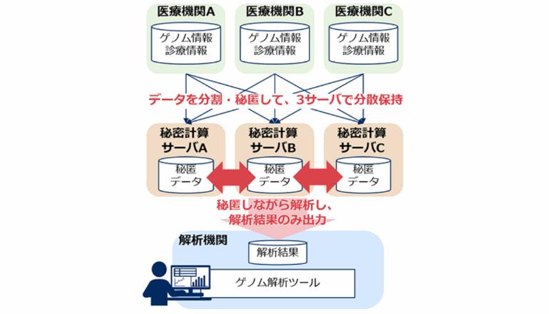 プライバシーを守る秘密計算とツールを実用化、ゲノム解析へ