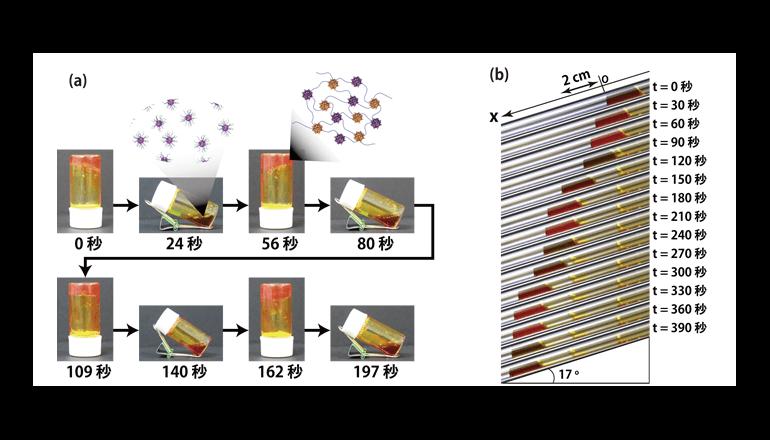 アメーバのような液体の人工合成に成功、東京大学とNIMS
