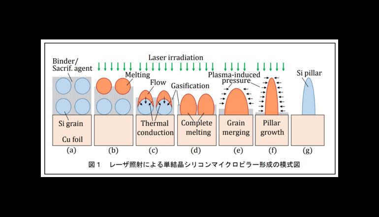 慶應義塾大学、レーザー照射によるシリコンマイクロピラーの形成に成功