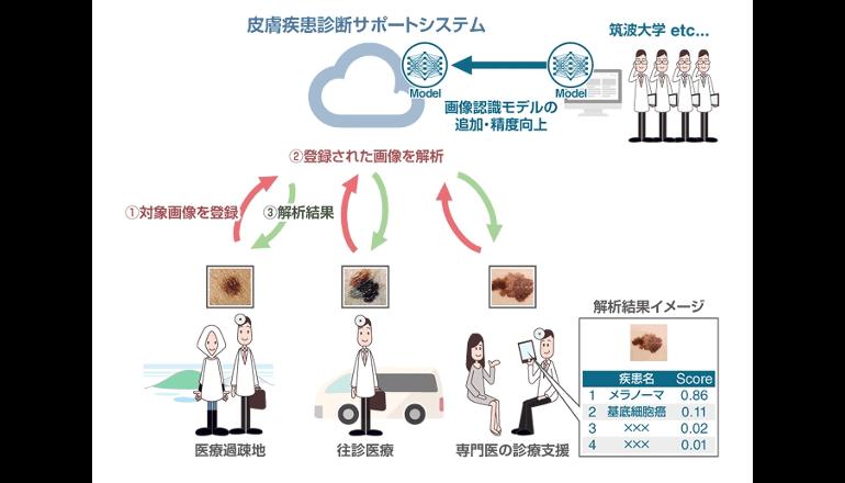 皮膚病の臨床画像をディープラーニング