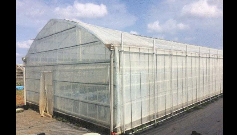 新素材プラスチックを利用した農業用ハウスの実証実験、東農大ら