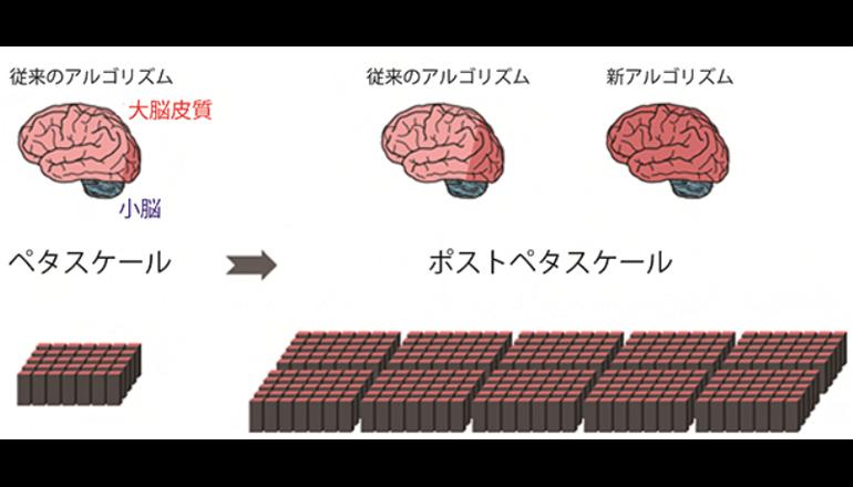 次世代スパコンで人脳シミュレーション、アルゴリズム開発に成功