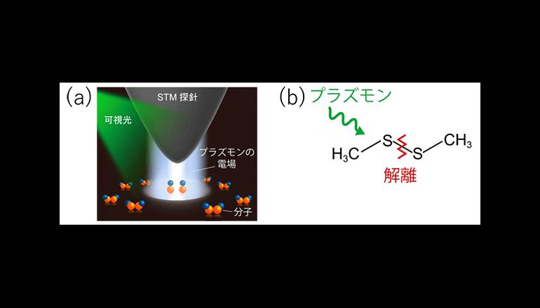 金属表面ナノサイズの反応機構、新しい光触媒の開発へ
