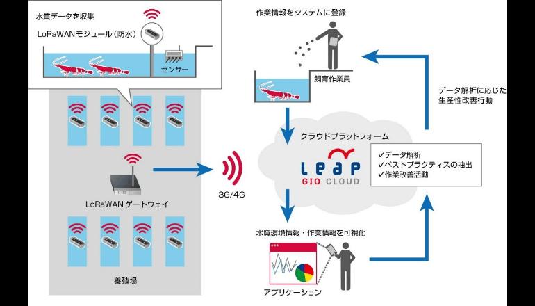 AI/IoTを活用して養殖事業の生産性を向上、タイで実証実験
