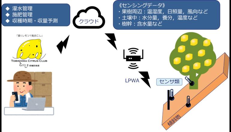 IoT×レモンで島おこし、広島県で実証実験