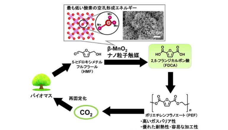 レアメタル不要、MnO2触媒にてバイオ由来のPEF原料を合成