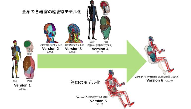 安全を解析する仮想人体モデル、自動運転時代の乗員姿勢に対応