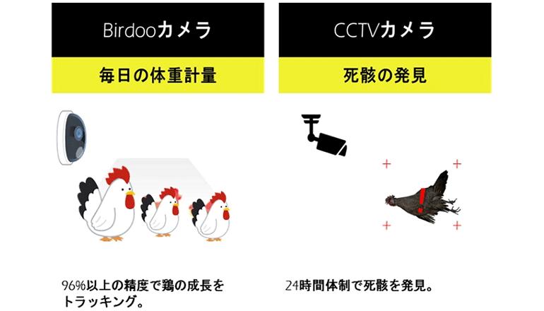 養鶏オートメーションに向けて、体重測定などをAIで自動化する