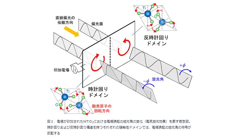新しい電子・光学デバイスの開発につながる、強軸性ドメインを可視化